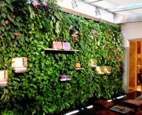 Centomo realizzazione giardini verticali a verona for Giardino verticale